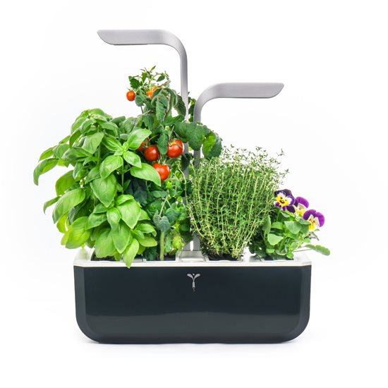 "Jardiniera ""SMART Garden"" 33 x 18,5 x 45 cm, Soft Black - Veritable"